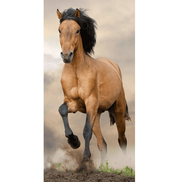 Barna ló pamut törölköző 70x140 cm