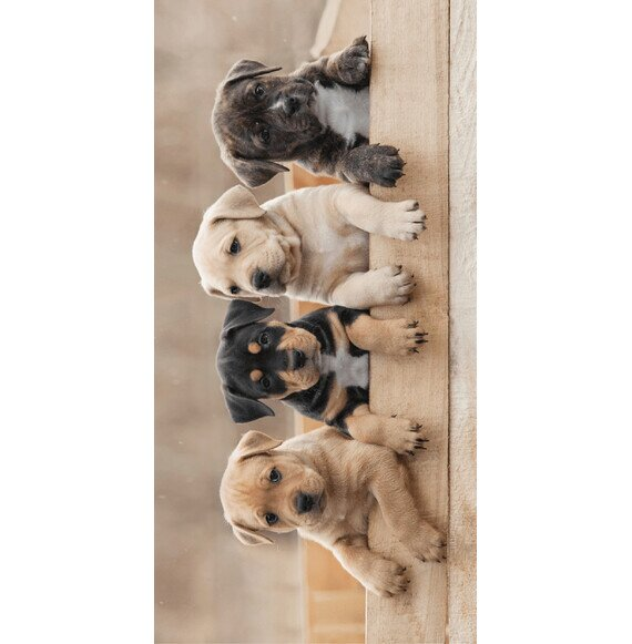 Kutyusok pamut törölköző 70x140 cm